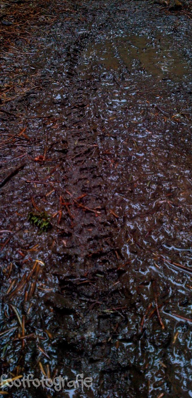 track'd mud